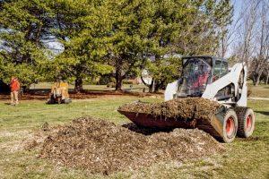 Yard Debris Removal in Richmond